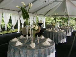 Elegant, Sophisticated Weddings and Outdoor Weddings are 2011 Trends